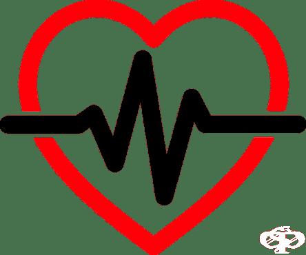 Ефектът от COVID-19 върху сърцето се проучва от американски кардиолози - изображение