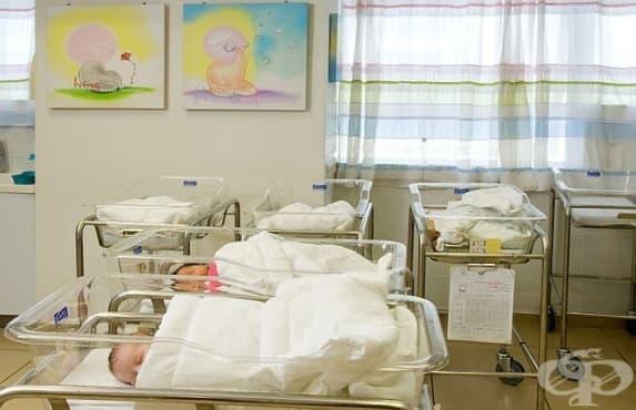 Антирекорд по раждаемост за първите 6 месеца от 2017 година - изображение