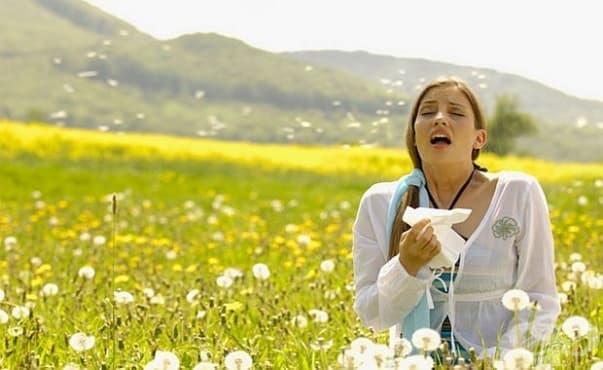 Учени откриха как да предотвратяват алергични реакции - изображение