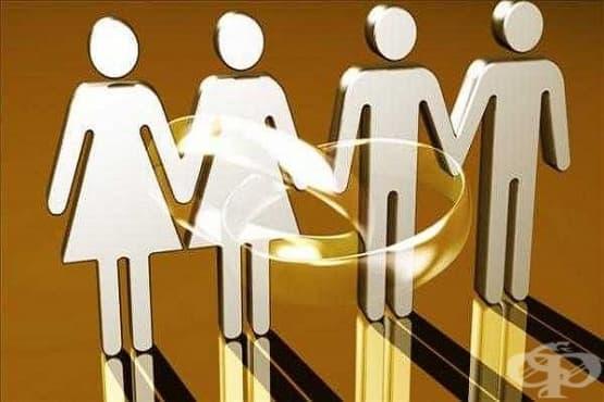 Австрия узакони хомосексуалните бракове - изображение