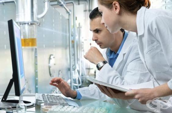 Австралийски учени успяха да превърнат човешки стволови клетки в бъбречна тъкан - изображение