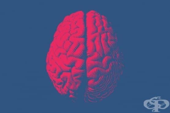 Ще лекуват болестта на Алцхаймер с лекарство против херпес - изображение
