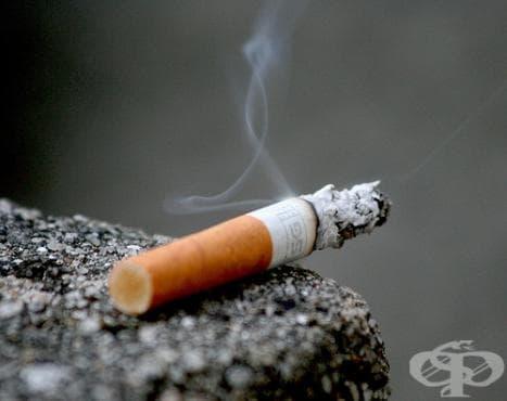 През лятото ще се въведе пълна забрана на пушенето в малките заведения - изображение
