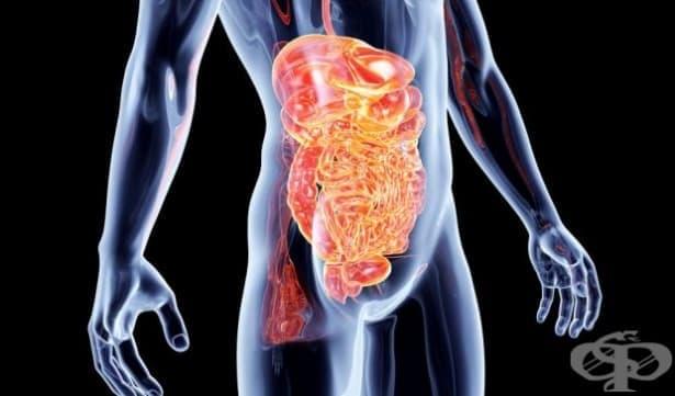 Увеличават се случаите на рак на дебелото черво в страната - изображение