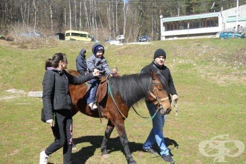 Във Враца се проведе традиционната хипотерапия за деца с аутизъм - изображение