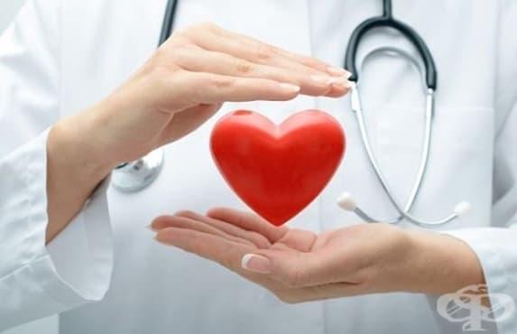 Днес отбелязваме Световния ден на сърцето  - изображение