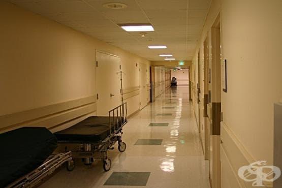 Намалява броят на клиничните пътеки в общинските болници в Добрич - изображение
