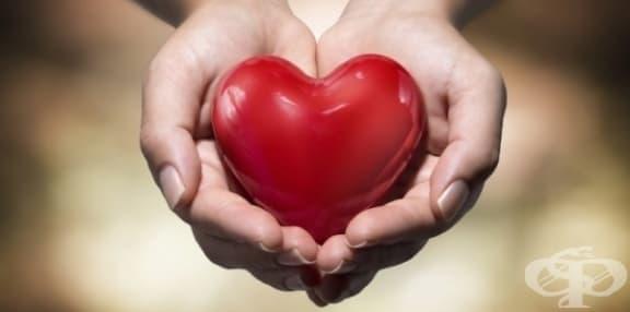 Една история за пропуснатия шанс да дариш живот – или един поглед върху донорството – по писмо от наш читател - изображение