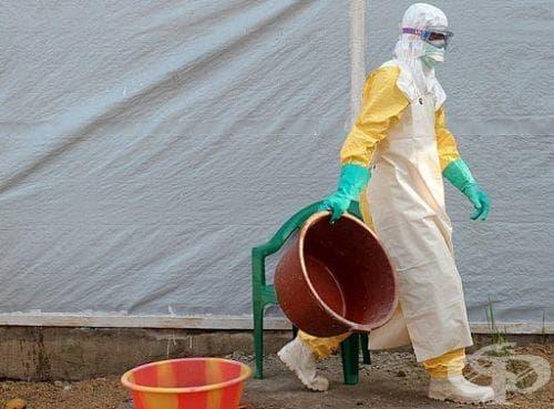 Над 13 хиляди са заразените с ебола - изображение