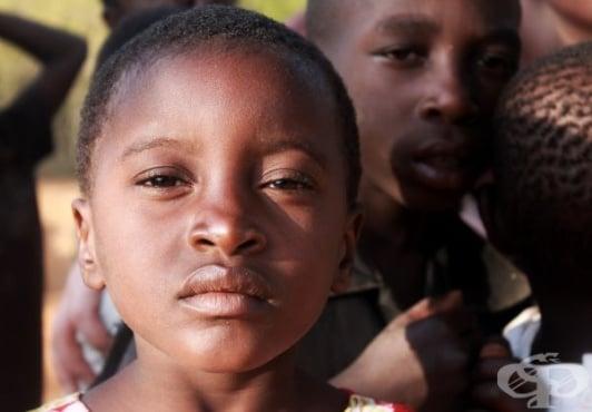 СЗО и УНИЦЕФ създадоха глобален резерв от ваксини срещу ебола - изображение