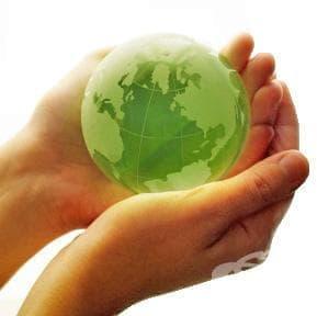 Фермерите по света ще трябва да удвоят общото производство на храна до 2050 г. - изображение