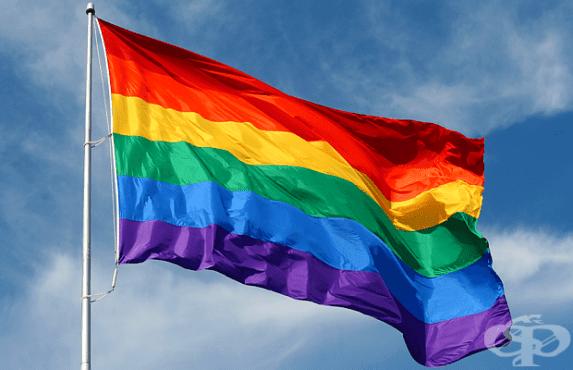 Узакониха еднополовите бракове в Малта - изображение