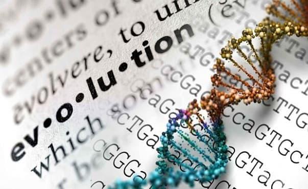 Учени откриха доказателство, че съвременните хора също еволюират - изображение