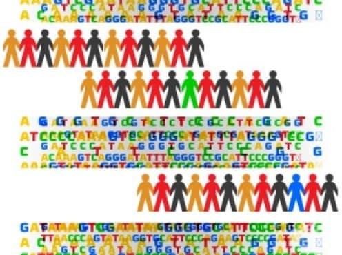 Европа започва реализацията на мащабен генетичен проект - изображение