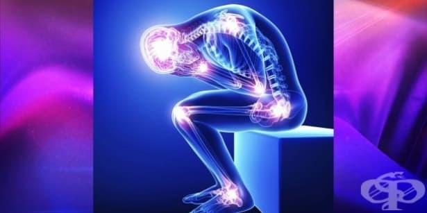 В Седмицата на ревматичните заболявания - особености и проблеми пред болните  - изображение