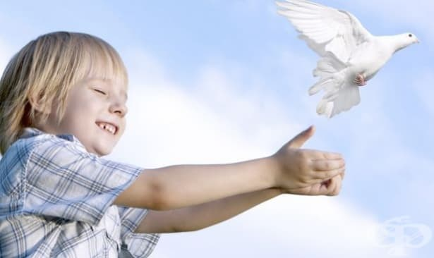 Фондът за лечение на деца одобри документите на 34 - изображение