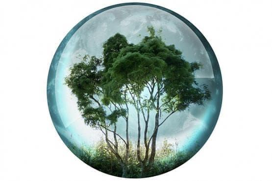 Узана поляна фест ще покаже приложна екология в дните от 13 до 15 юни - изображение