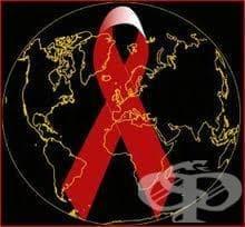 С концерт и многобройни прояви ще бъде отбелязан Световният Ден за съпричастност със засегнатите от ХИВ/СПИН - изображение
