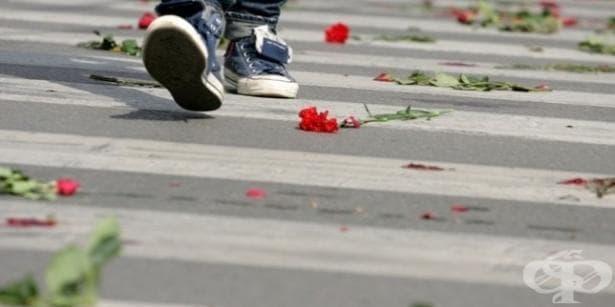 Министерството на здравеопазването ще се включи в отбелязването на Европейския ден за пътна безопасност - изображение