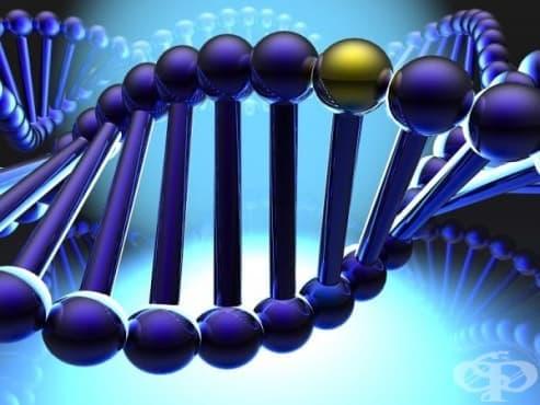 """Проблемният сън е свързан генетично със синдрома на """"неспокойните крака"""", шизофренията и затлъстяването - изображение"""