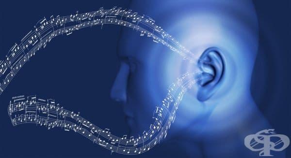 Генна терапия ще може да лекува наследствена глухота - изображение
