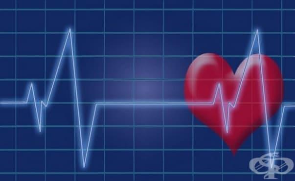 Разработиха нов тест за диагностициране на скрити сърдечни заболявания - изображение