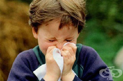 Д-р А.Кунчев: Грипната епидемия ще обхване още области - изображение
