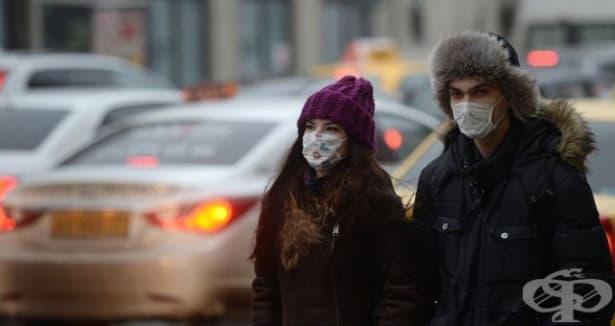 H3N2 е грипният щам, който върлува в САЩ тази година - изображение