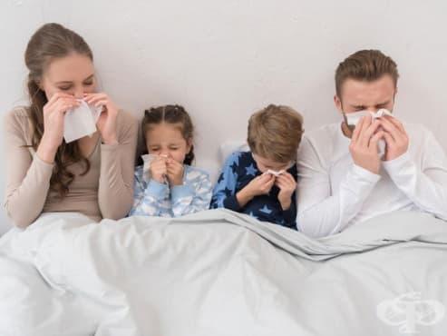В област Стара Загора грипната епидемия остава в сила - изображение