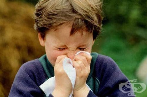 Децата от Българево в грипна ваканция - изображение