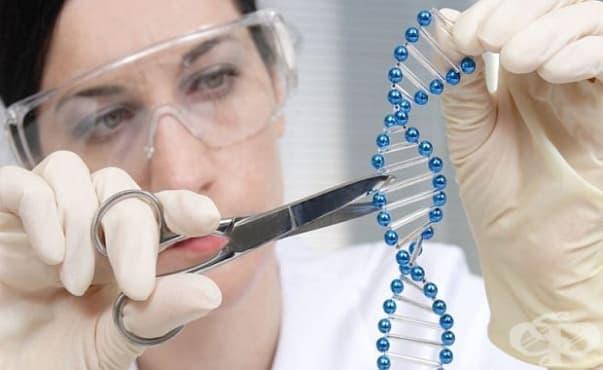 Учени успешно прилагат генна терапия срещу ХИВ вируса - изображение
