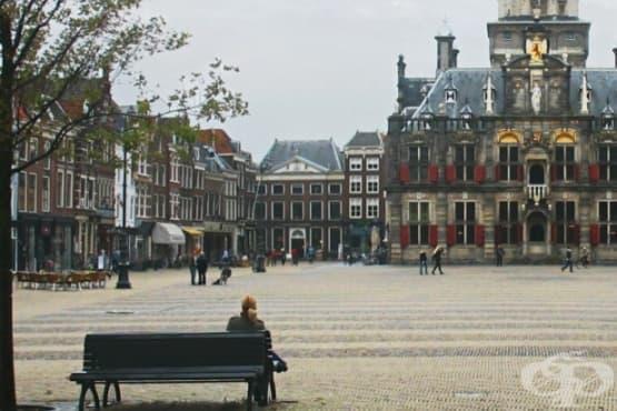 В Холандия мобилно приложение ще помага на хомосексуалните бежанци - изображение