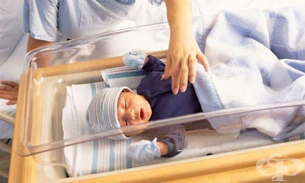 Инкриминиране на ранната бременност искат лекари - изображение