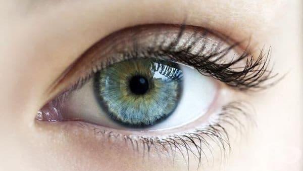 Създадоха изкуствена ретина, която ще възвръща зрението - изображение