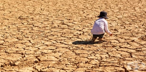 По данни на ООН 2016 г. е била най-горещата в историята - изображение
