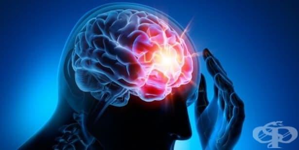 Кръвен тест ще открива мозъчно сътресение - изображение
