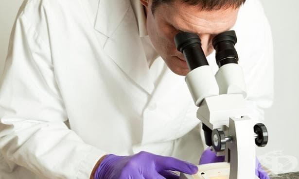 Учени създадоха универсално лекарство срещу рак - изображение