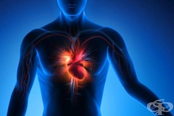 Лекарство против подагра помага при сърдечна недостатъчност - изображение