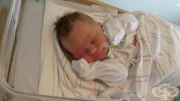 Момиченце е първото бебе, родило се в МБАЛ - Ловеч - изображение