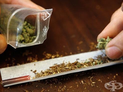 В Пуерто Рико разрешиха използването на марихуана с медицинска цел - изображение