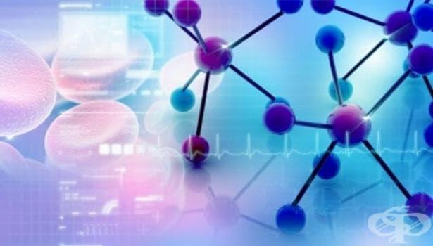 Британски учени направиха важно откритие относно произхода на метаболизма - изображение
