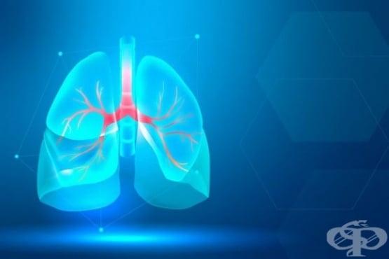 Лечение, включващо растителен вирус, блокира развитието на ракови метастази в белия дроб - изображение