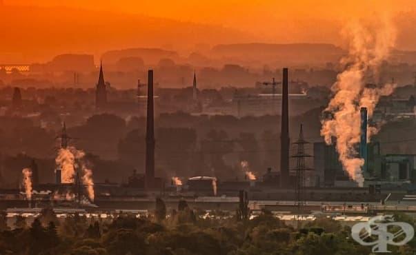 Милиони деца ще страдат от загуба на интелигентност заради замърсения въздух - изображение