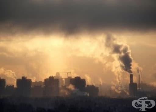 Над 4 000 000 души в света умират заради високите нива на фини прахови частици - изображение