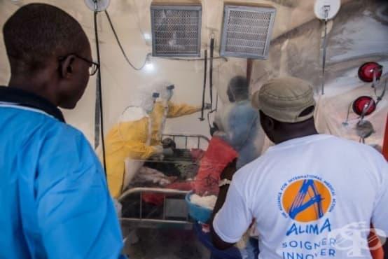 Над 900 са заразените от ебола в Конго до момента - изображение