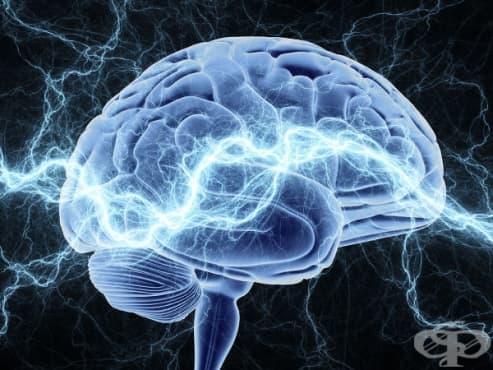 Невробиолози разгадаха механизмите на болката - изображение