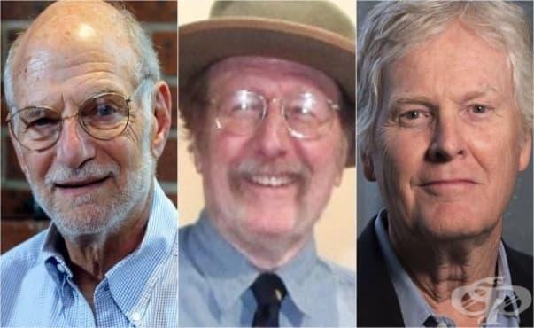 Циркадните ритми донесоха Нобел за медицина на трима американски учени - изображение
