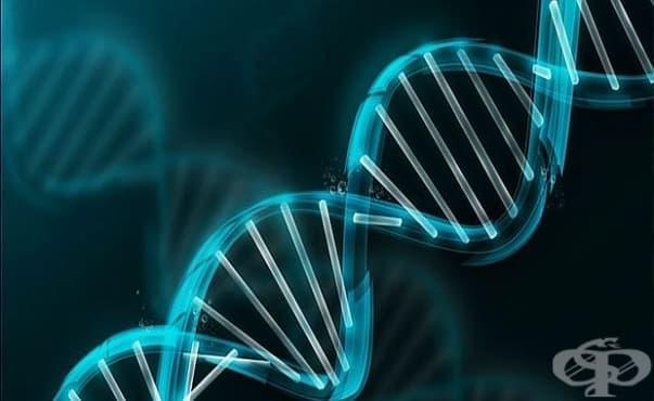 Български лекари с откритие при невродегенеративните заболявания - изображение