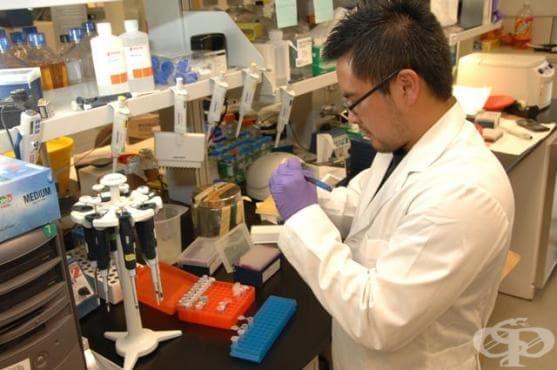 Ново откритие дава надежда, че ракът може да бъде победен - изображение