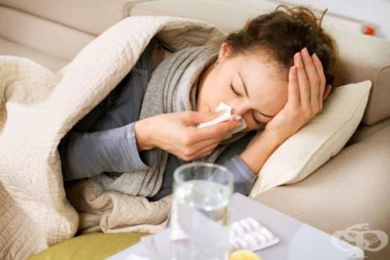 Грипът приключи, идват респираторните инфекции и алергиите - изображение